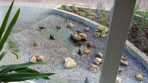 003.Laag stromend water trekt veel dieren aan