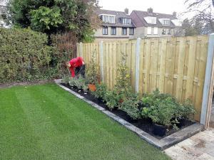025.Beplanting en gazon maken de tuin grotendeels af